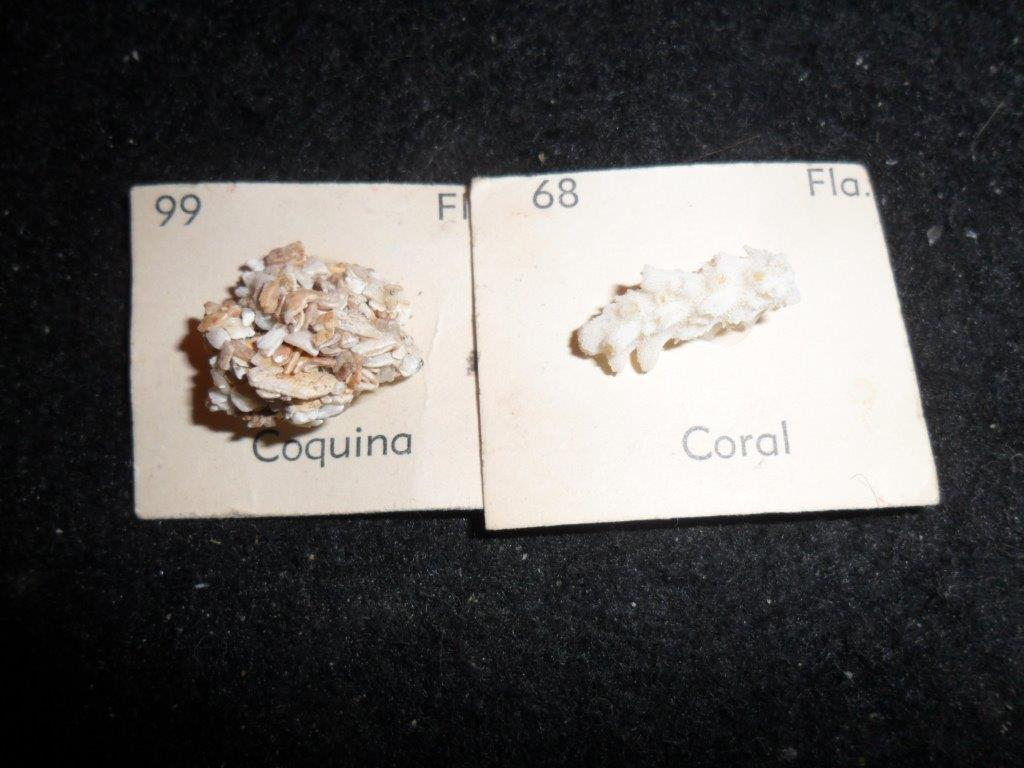 Florida State Mineral Collection